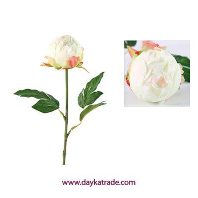 733849 Flor blanca y rosa